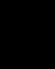 Stella szczotka WC wolnostojąca czarny mat 07.436-B