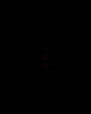 Timex gniazdo podwójne z/u natynkowe białe GNT-6N