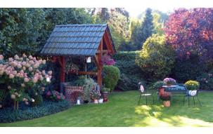Pielęgnacja trawnika i ogrodu przez cały rok - jakiego sprzętu i akcesoriów potrzebujesz?