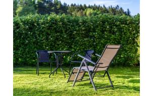 Jak prawidłowo dbać o trawnik i żywopłot?