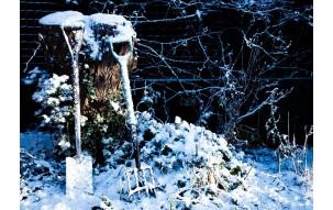 Zimowe prace w ogrodzie - w jakie narzędzia warto się zaopatrzyć?